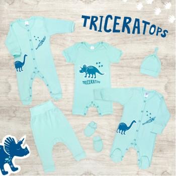 Dino traces
